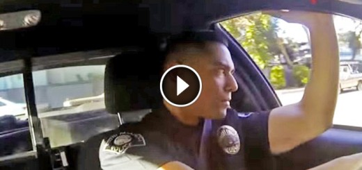 cop saves girl bridge
